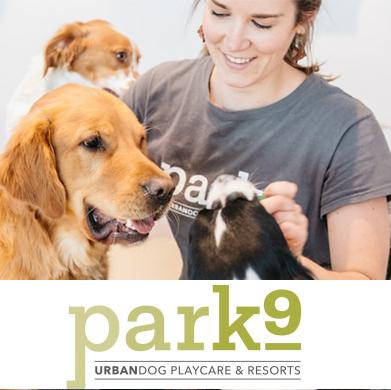 46: Park 9 Bath & Nail Trim (Large Dog)